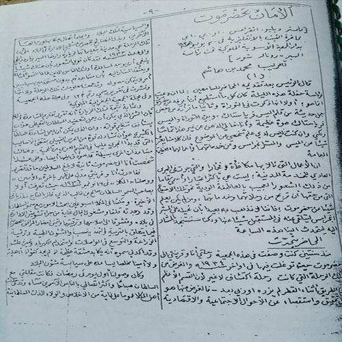 محمد بن هاشم مترجما